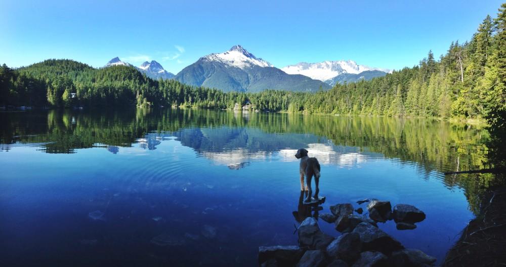 Levette lake - morning